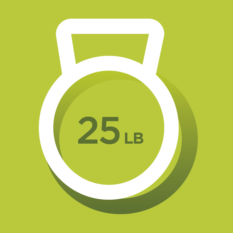 Nelnet wellness weight icon